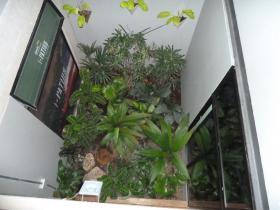 patios-15.jpg