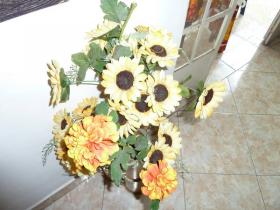 sunflower-21.JPG